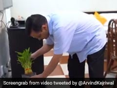 """Have To Defeat Dengue Together"": Arvind Kejriwal Shares Video On Twitter"