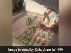 Help Pours In For Elderly Man Selling Plants On The Roadside In Bengaluru