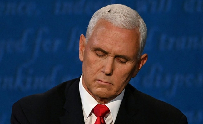 '3 Debaters Now On Stage': Fly On Pence's Hair Triggers Twitter Trend