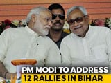 Video : PM To Pitch For Nitish Kumar-As-Chief Minister With 12 Rallies In Bihar
