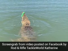 Watch What Happened When A Fisherman Accidentally Hooked A Crocodile