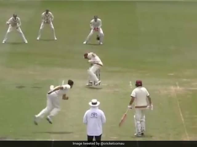 Watch: Mitchell Starc Hits Marnus Labuschagne With A Vicious Bouncer
