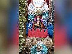 Currency Notes Worth Rs 1 Crore Used To Decorate Goddess On Dussehra