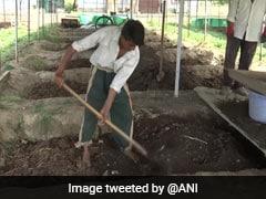 कश्मीर में ऑर्गेनिक खेती को एक्सपर्ट दे रहे बढ़ावा, किसानों को बताई जा रही नई तकनीक