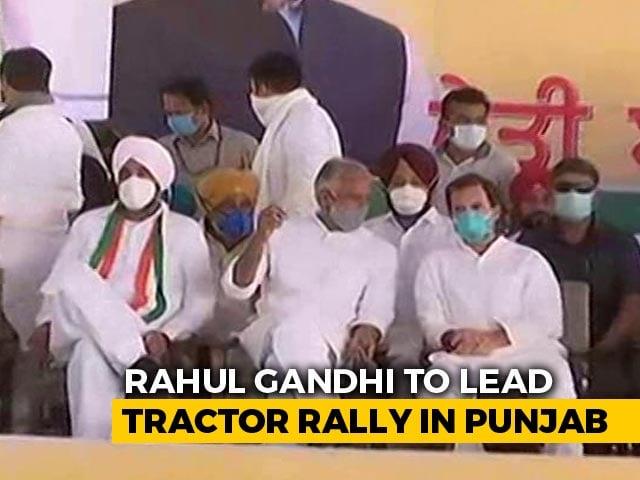 Video : Rahul Gandhi Begins 3-Day Protest In Punjab Against Farm Laws