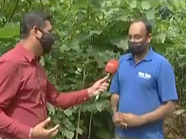 Video : Indian Navy Develops An Urban Forest In Mumbai