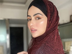 """My Happiest Moment"": <I>Bigg Boss</i> Alumnus Sana Khan Quits Showbiz"