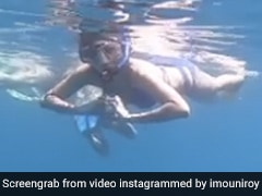 Mouni Roy मछलियों के साथ-साथ यूं तैरती आईं नजर, Video शेयर कर एक्ट्रेस ने दिखाया समुद्र के अंदर का नजारा