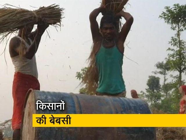 Video : किसानों को धान की आधी कीमत क्यों ?
