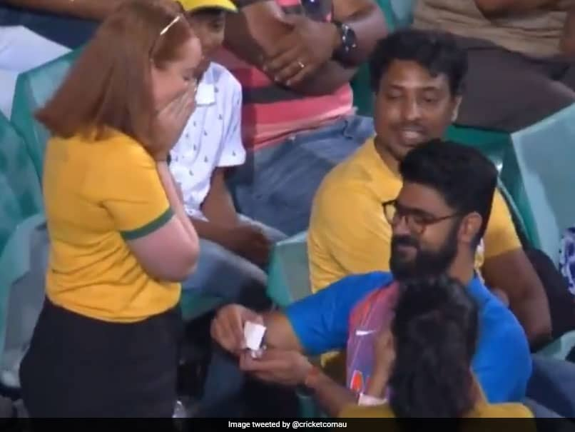 Australia vs India: India Supporter Proposes To Australia Fan During 2nd ODI. Watch