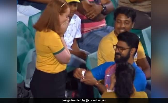 Aus Vs Ind: Indian boy propose to Australian girlfriend, Maxwell claps while watching Watch video