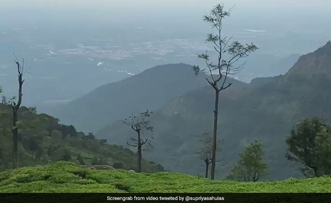 Watch: IAS Officer Shares Stunning Video Of 'Piece Of Heaven On Earth'