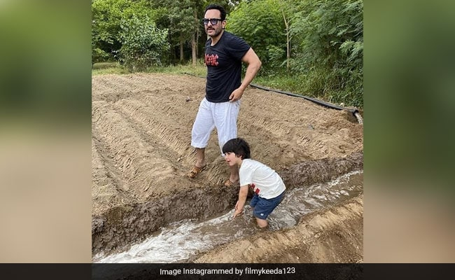 Viral: Pics Of Saif Ali Khan And Taimur Farming In Pataudi