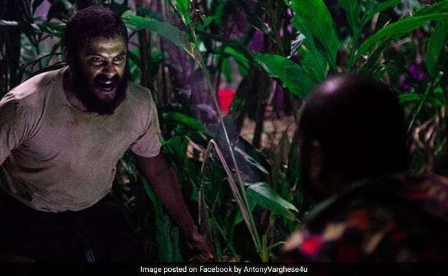Oscars 2021: Jallikattu Is India's Official Entry