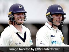 Will Pucovski, Marcus Harris Smash Waughs' Sheffield Shield Record With 486-Run Opening Stand