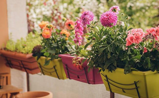રેલ્વે અધિકારીએ લોકોને લગ્ન કાર્ડ પર ફૂલો અને શાકભાજીના બીજ મોકલીને લોકોને આમંત્રણ આપ્યું હતું