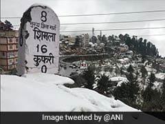 शिमला के कुफ़री में हुई ताजा बर्फबारी के बाद बढ़ी पर्यटकों की संख्या