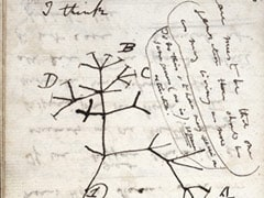 """Charles Darwin's Notebooks Reported """"Stolen"""" From Cambridge University"""