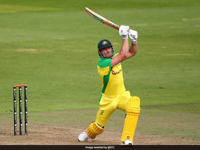 India vs Australia: Ricky Ponting Hails Marcus Stoinis Improvement Since Last Year