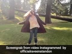 Raveena Tandon डलहौजी की खूबसूरत वादियों में यूं झूमती आईं नजर, Video हुआ वायरल