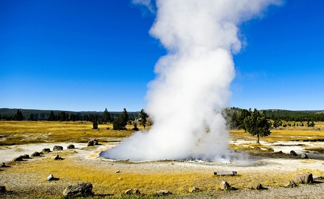 Man Banned From Yellowstone For Trying To Cook Chicken In Hot Spring