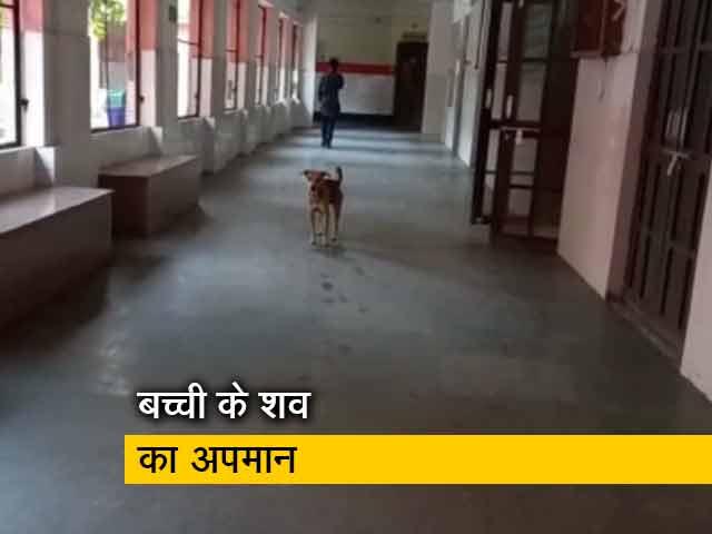 Videos : उत्तर प्रदेश के संभल में जिला अस्पताल की लापरवाही आई सामने