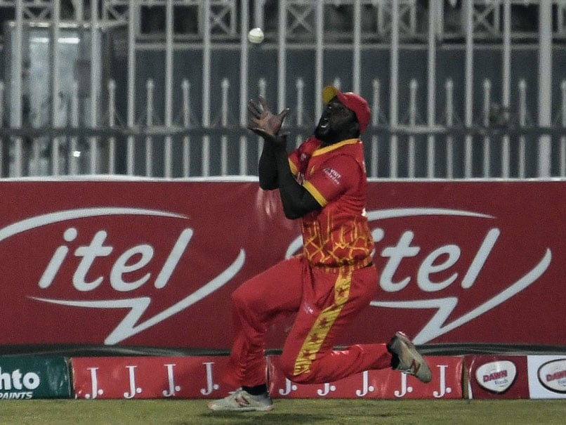 PAK vs ZIM: Zimbabwe Star Elton Chigumbura To Retire After Pakistan Tour