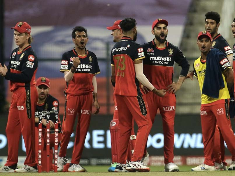 "IPL 2020: England Cricketer Trolls RCB With MS Dhoni's ""Definitely Not"" Viral Quote"