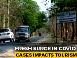 Video : Empty Hotels At Corbett And Ranthambore This Winter