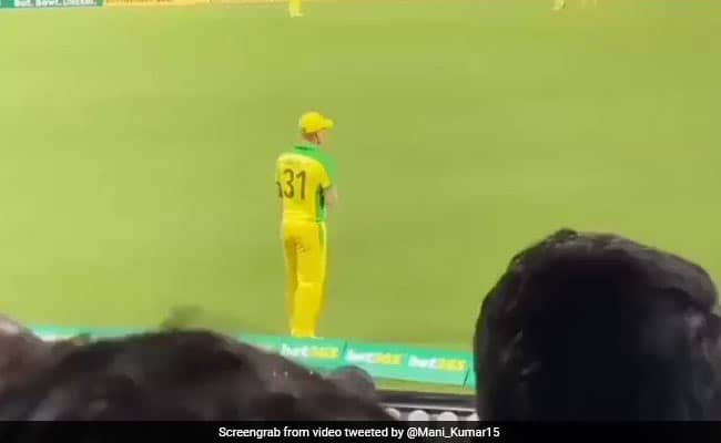 IND v AUS 2020: David Warner entertains fans in the crowd with steps from famous song Butta Bomma