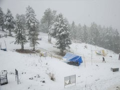 Shimla Receives Season's First Snowfall, Weather Office Predicts Rain On Monday