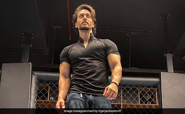 Tiger Shroff's New Project Ganapath Gets The Biggest Shoutout From Hrithik Roshan And Disha Patani