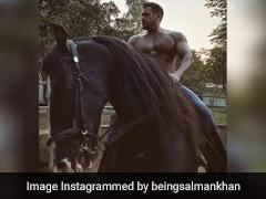 सलमान खान घोड़े की सवारी करते आए नजर, Photo हुआ वायरल