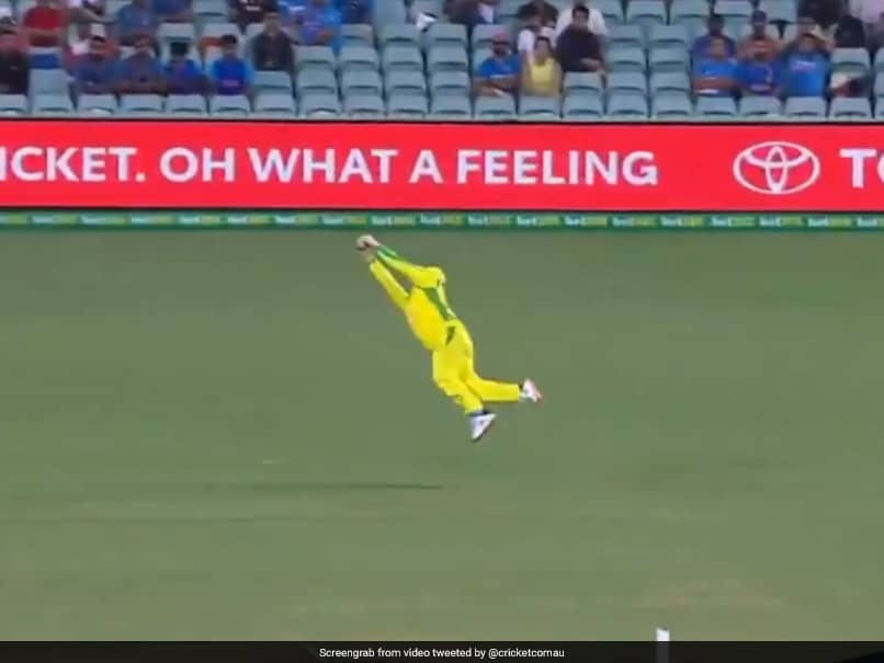 Australia vs India: Steve Smith Takes A Blinder To Dismiss Shreyas Iyer. Watch