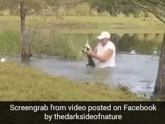 Man Jumps Into Water, Pries Open Jaws Of An Alligator To Rescue Dog. Watch