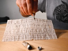 Carrier Pigeon's Century-Old Message Found In French Field
