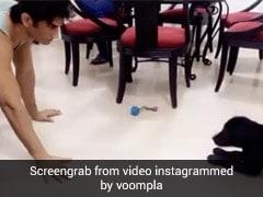 Sushant Singh Rajput का थ्रोबैक Video हुआ वायरल, फज के साथ खेलते आए नजर