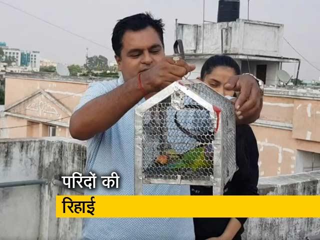Videos : पिंजरे में बंद पंछी को खुला आसमान दिलाने का मिशन 'पंख'