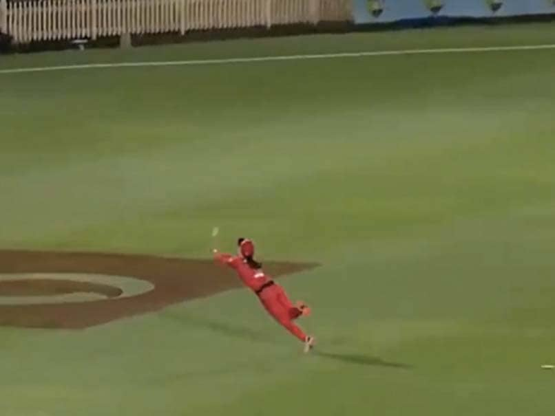 """OH MY WORD"": Courtney Webb Takes Sensational Catch In Womens Big Bash League. Watch"