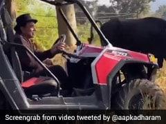 Dharmendra गाय-भैंसें चराते नजर आए नजर, फार्महाउस का Video हुआ वायरल