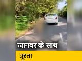 Video : केरल : कुत्ते को कार से बांधकर घसीटा, केस दर्ज