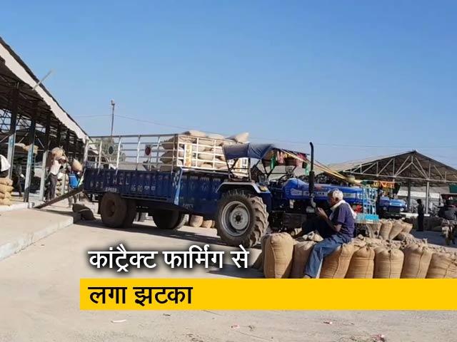 Videos : मध्य प्रदेश में धान किसानों को कांट्रैक्ट फार्मिंग से फायदा होने के दावों पर उठे सवाल