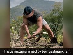 Salman Khan हाथों में फावड़ा लेकर कड़ी धूप में यूं खेती करते आए नजर, Photo शेयर कर बोले- धरती मां...