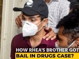 Video : Can't Say Showik Chakraborty Financed Drugs: Court In Bail Order