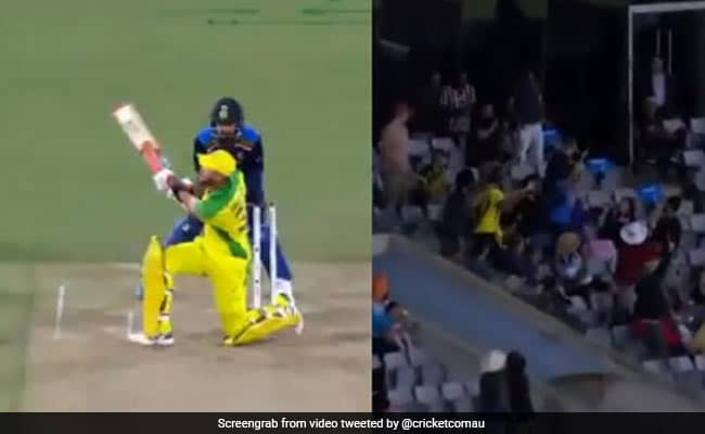 Watch: Glenn Maxwell's Massive Switch Hit Six After Ian Chappell Urges ICC To Ban The Shot