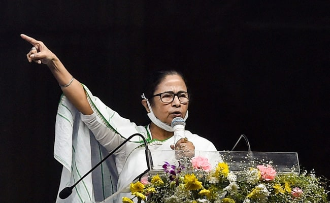 'BJP Bringing Party From Hyderabad To Cut Muslim Votes': Mamata Banerjee