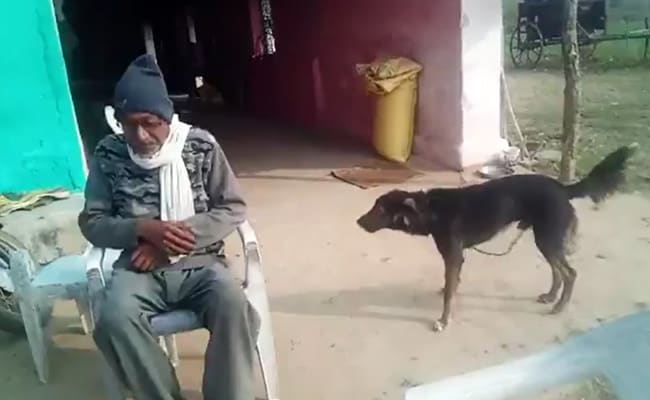'Angry' With Feuding Family, Farmer Wills Half His Property To Pet Dog