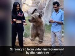 युजवेंद्र चहल पत्नी Dhanashree Verma के साथ भालू को खाना खिलाते आए नजर- देखें Video