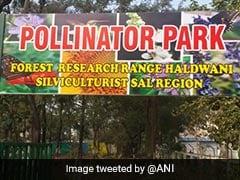 हल्द्वानी में  देश का पहला पॉलीनेटर पार्क बनकर तैयार, 50 से ज्यादा प्रजातियां मौजूद