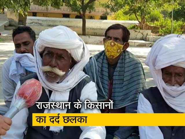 Videos : राजस्थान के किसानों की परेशानियां अलग